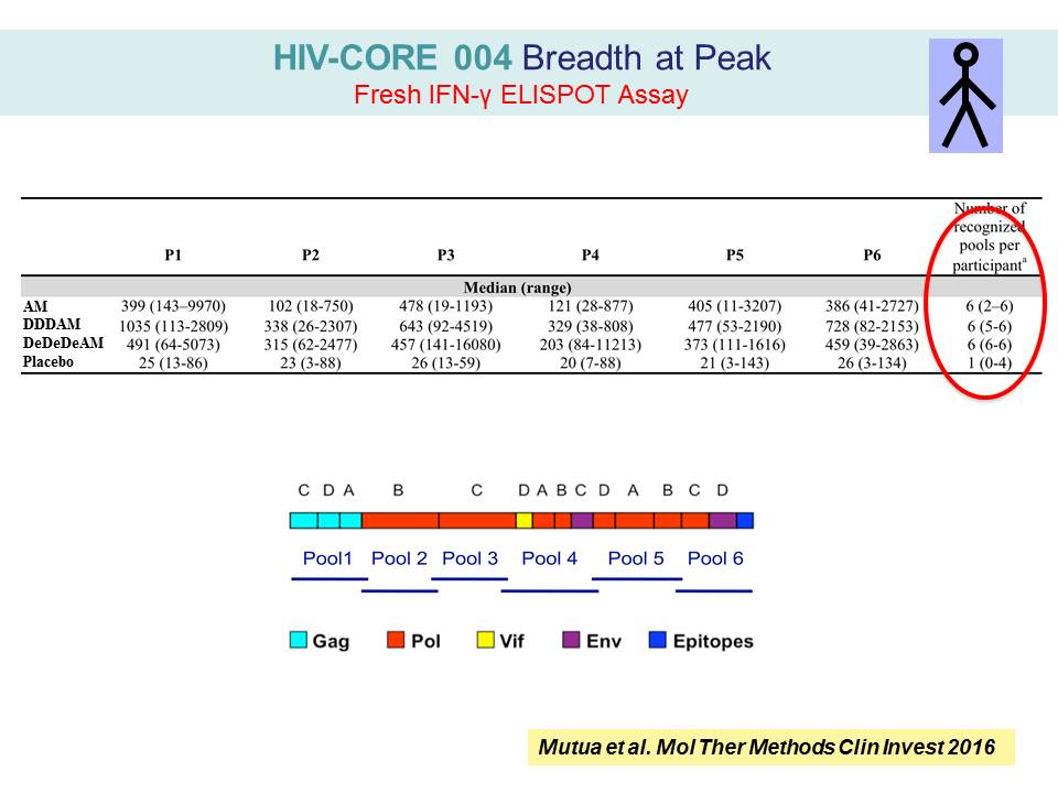 HIV-CORE 004 Breadth at Peak Fresh IFN-γ ELISPOT Assay