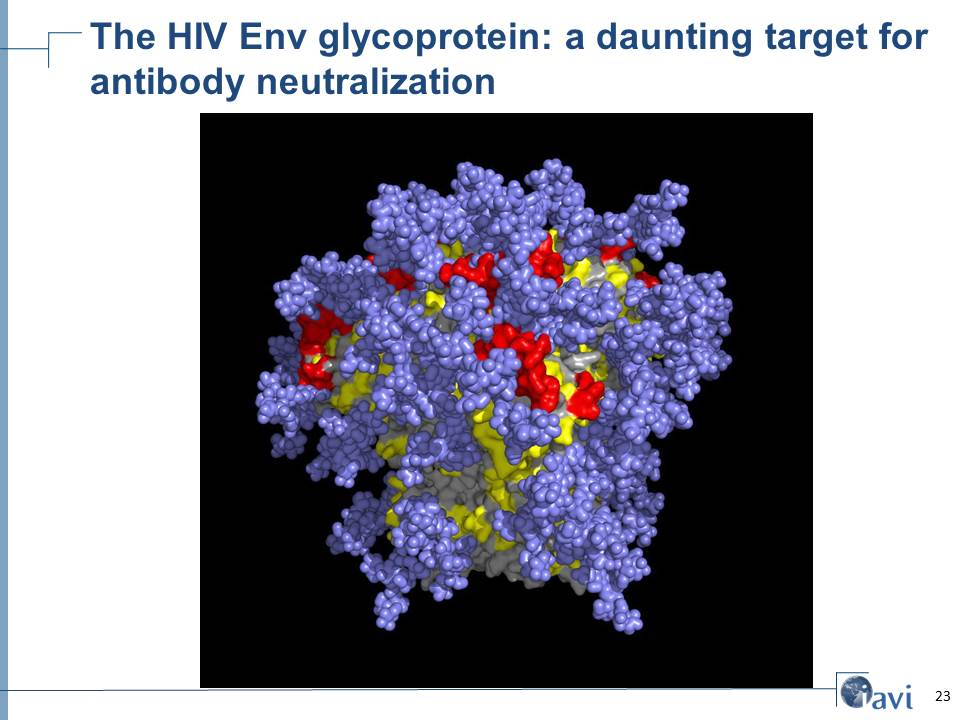The HIV Env glycoprotein: a daunting target for antibody neutralization
