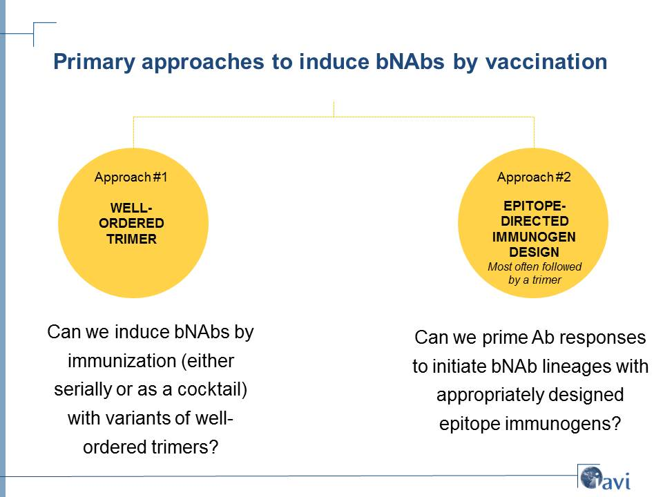 Primary approaches to induce bNAbs by vaccination