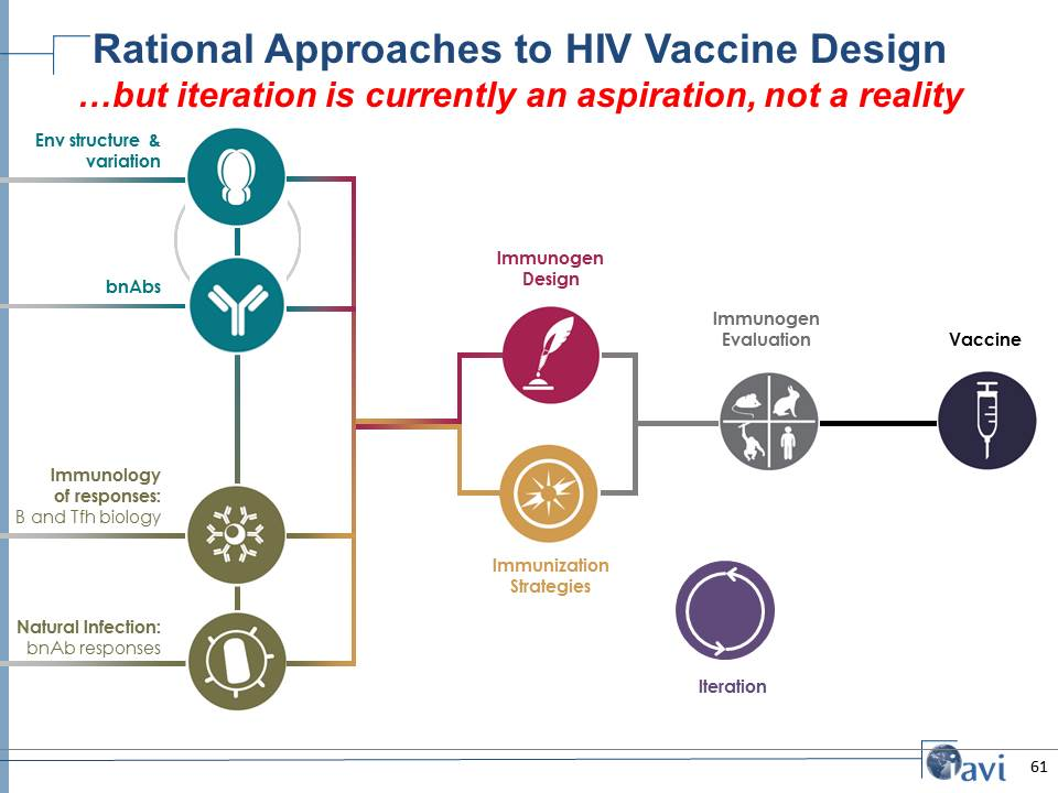 Rational Approaches to HIV Vaccine Design