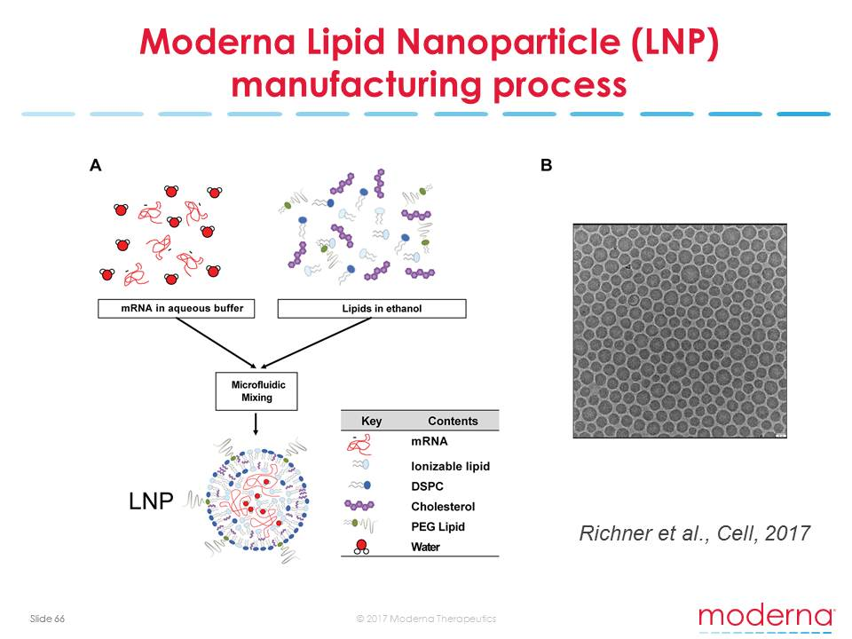 Moderna Lipid Nanoparticle (LNP) manufacturing process