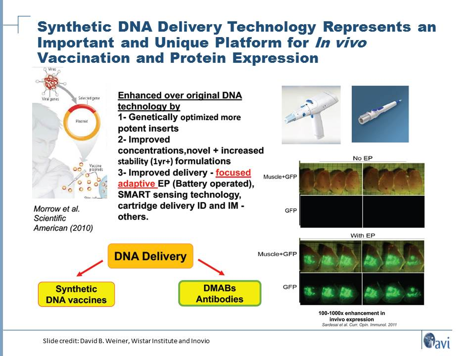 Synthetic DNA Delivery Technology Represents an Important and Unique Platform for In vivo