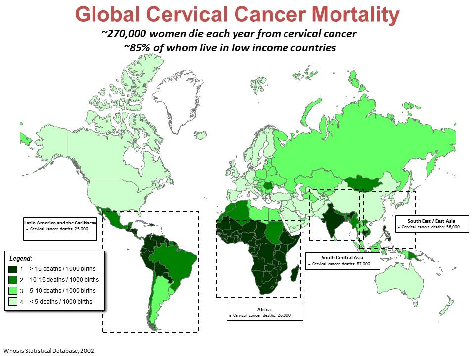Global Cervical Cancer Mortality