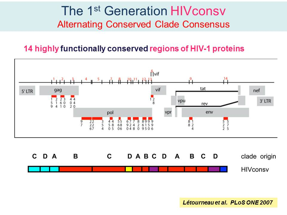 The 1st Generation HIVconsv Alternating Conserved Clade Consensus